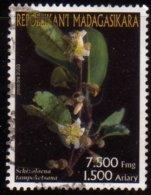 Madagascar 2003 Fleurs Tropicales / Schizolaena / Tropical Flowers / Plantes N° 1846 Oblitéré Used - Madagascar (1960-...)