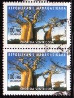 Madagascar 2002 Baobab Chorisia Ventricosa / Arbres / Plantes Tropicales / Tropical Plant N° 1832 Oblitéré Used Paire - Madagascar (1960-...)