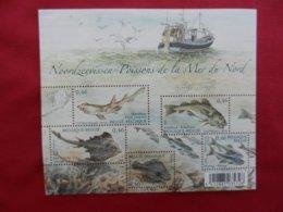 Planche De Timbres - Belgique - Poissons De La Mer Du Nord - 2006 - Feuillets