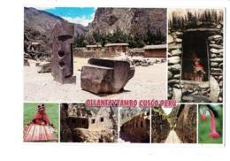 Cpm - PEROU PERU -  Ollantaytambo CUSCO  Forteresse Inca - ANIMATION Fillette Poupée Fleur Datura Tissage - Perù