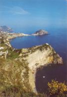 Ischia - S.angelo ( Napoli ) - Panorama - Viaggiata - Napoli