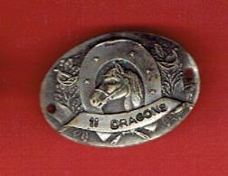 INSIGNE METAL 11e REGIMENT DE DRAGONS AVANT 1929 FABRICANT MOURGEON PARIS - Frankrijk