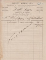 ** DALLE' SOEURS.- PARIS.-1880.- FLEURS.-** - 1800 – 1899