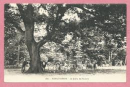 67 - SCHILTIGHEIM - Le Jardin Des Enfants - Schiltigheim