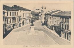 ROVIGO-PIAZZA GARIBALDI VIA SILVESTRI - Rovigo
