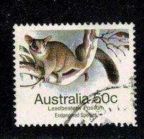 Australie  1985 Leadbeater's Possum 50 C. (o) Used - 1980-89 Elizabeth II