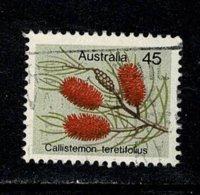 Australie  1975 Callistemon Teretifolus  45 C. (o) Used - 1966-79 Elizabeth II