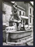 CAMPANIA -CASERTA -SESSA AURENCA -F.G. LOTTO N°580 - Caserta