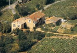 69 RHONE Carte Promotionnelle Vignoble Beaujolais Philippe Deschamps à BEAUJEU - Beaujeu