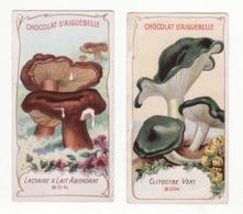 Chromo  CHOCOLAT AIGUEBELLE   Lot De 2   Les Champignons    Clitocybe Vert, Lactaire à Lait Abondant - Aiguebelle