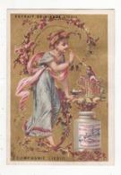 Chromo  LIEBIG   Femme Et Oiseau, Fleurs - Liebig