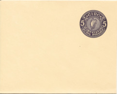 Ireland Postal Stationery Cover In Mint Condition - Postal Stationery