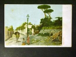 CAMPANIA -NAPOLI -CAPRI -F.P. LOTTO N°400 - Caserta