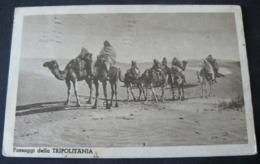 LIBYA 1940 : TRIPOLITANIA ...................///   BELLA CARTOLINA DELLA TRIPOLITANIA VIAGGIATA PER NAPOLI - Libia