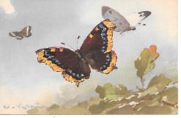 Catherina Klein - C. Klein - Butterfly, Papillon, Schmetterling - Klein, Catharina