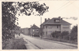 Leefdaal, Leefdael, Brabant, Statiestraat (pk64147) - België