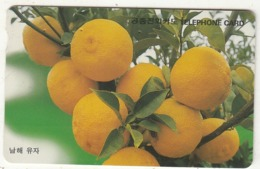 SOUTH KOREA - Citron In The Southern Sea(W3000), 11/96, Used - Corée Du Sud