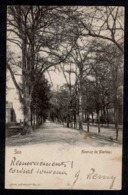 Spa - Avenue De Marteau - Viaggiata 1905 - Rif. 07834 - Spa