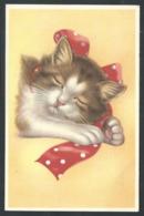 +++ CPA - Carte Fantaisie - Chat - Cat - Katze   // - Gatti