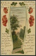 ALTE POSTKARTEN - VARIA GEBURTSTAGS- Und GLÜCKWUNSCHKARTEN, 17 Verschiedene - Postkaarten