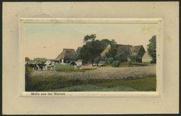 ALTE POSTKARTEN - VARIA PFERDE Und KÜHE, 5 Verschiedene Karten - Postkaarten