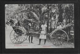 AK 0359  Rickshaws ( Ceylon ) - Skeen-Photo Ca. Um 1910 - Asien