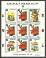 PARAGUAY 1986 BUTTERFLIES FUNGI MUSHROOMS BOY SCOUTS SHEET MNH - Paraguay