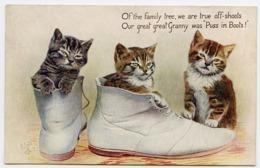CATS : PUSS IN BOOTS (TUCK'S OILETTE) - Gatti