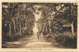 CPA - Edition PASQUIER- ANAN- 49 - STELLA-PLAGE - LA FORÊT - France