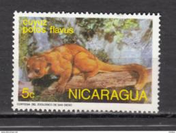 ##26, Nicaragua, Le Kinkajou (Potos Flavus), Zoo De San Diego - Nicaragua