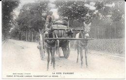40 LANDES - LA CÔTE D'ARGENT - 2694 - ATTELAGE LANDAIS TRANSPORTANT LA RESINE - ANES - - France