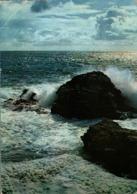 Belle Isle En Mer Sauzon Grosse Mer A La Pointe Des Poulains       CPM Ou CPSM - Belle Ile En Mer