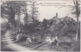 35. ST-AUBIN-DU-CORMIER. Rochers De Bécherel, Chemin De Bel-Air. 5023 - France