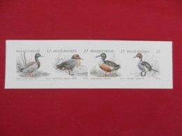 Belgique - Carnet De 4 Timbres Neufs - 1989 - Canards Sauvages - Booklets 1953-....