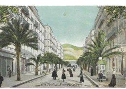 83 Toulon Avenue Colbert    Animée - Toulon