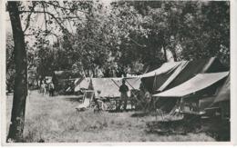 BREDENE HIPPODROME : Camping 12 - RARE VARIANTE - Cachet De La Poste 1954 - Bredene