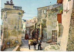 CAPOLIVERI - IL FOSSO - ELBA   (LI) - Livorno