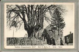CPA - MONT-SAINT-MARTIN (54) - Thème: Arbre - Aspect Du Tilleul Séculaire Place De L'Eglise En 1914 / 17 - Mont Saint Martin