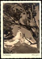 C9584 - TOP Das Matterhorn Foto Werner ?? - Hermann Wiechmann Foto Karte 165 - Ilustradores & Fotógrafos