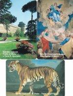 LOTTO 50 DI N° 3 SCHEDE VATICANO SCADENZA 01/05/1999 NUOVE - Vatican