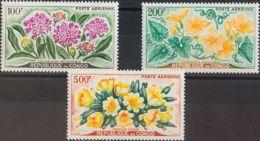 Congo, Aéreo. MNH **Yv 2/4. 1961. Serie Completa. MAGNIFICA. Yvert 2014: 21 Euros. - Congo - Brazzaville