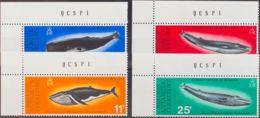 Antártida Británica. MNH **Yv 64/67. 1977. Serie Completa. MAGNIFICA. Yvert 2011: 40 Euros. - Territorio Antártico Británico  (BAT)