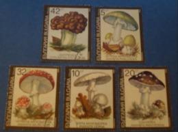 Bulgaria 1991 - One Set Of 5  Poisonous Mushrooms Flora Plant Mushroom Fungi Plants Nature Stamps Used - Mushrooms