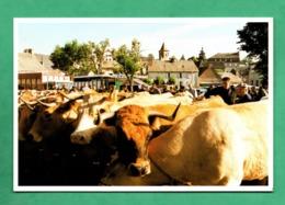 48 Lozere Nasbinals En Aubrac Foire Du 17 Aout 1995 ( Photo Livenais ) - Andere Gemeenten