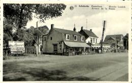 CPSM - Belgique - Adinkerke - Moeder Lambik - Pannelaan - Avenue De La Panne - Bélgica