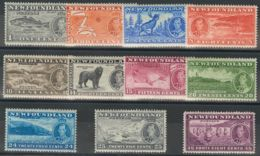 Terranova. MH *Yv 208/18. 1937. Serie Completa. MAGNIFICA. (SG257/67 60£) Yvert 2010: 57,5 Euros. - Newfoundland