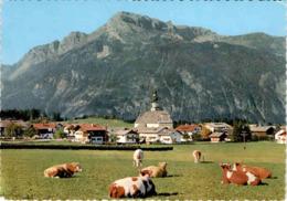 Reith Im Alpbachtal, Tirol (10) * 17. 7. 1967 - Brixlegg