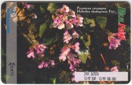 BULGARIA A-031 Chip BulFon - Plant, Flowers - Used - Bulgarie