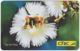 BRASIL K-006 Magnetic CTBC - Plant, Flower - Used - Brésil