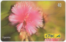 BRASIL K-010 Magnetic CTBC - Plant, Flower - Used - Brésil